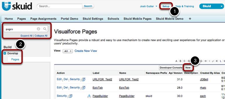 Reclaim the Salesforce Home Page — Skuid v12 1 9 Documentation